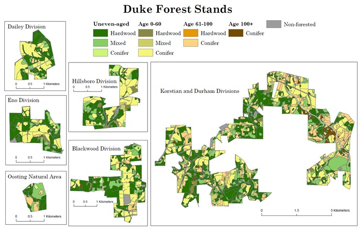 Maps of the forest stands in the Duke Forest.