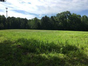 Blackwood Field in 2017 (After)