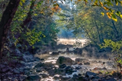 Early Morning Mist on New Hope Creek - Scott Johnson